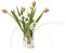 Fanny_silver_large_flower